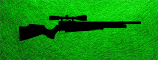 Picture for category AIRGUN - RIFLE